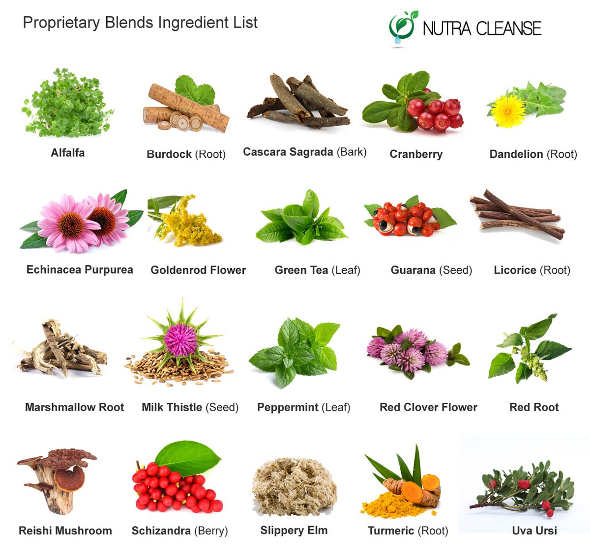 5-day-total-body-cleanse-ingredients